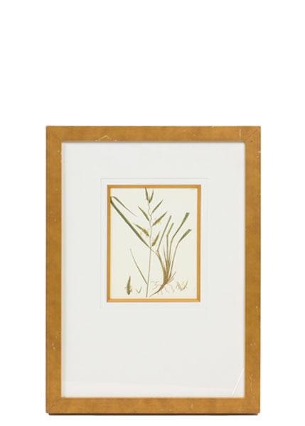 "16""w x 22""h Floral Art ART012295"