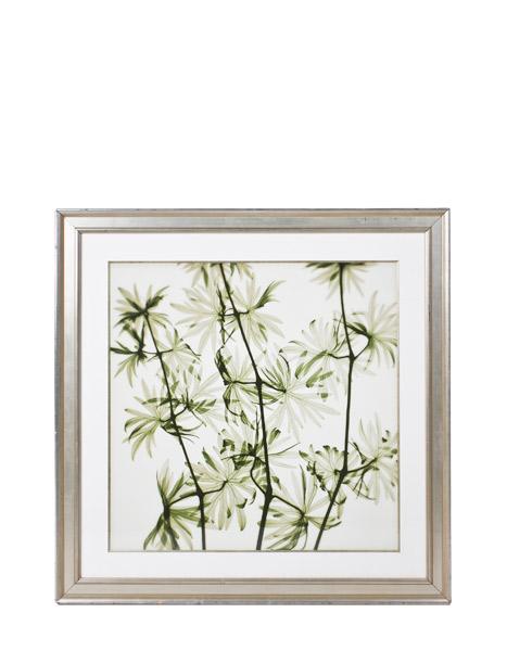 "36""w x 36""h Floral Art ART011870"