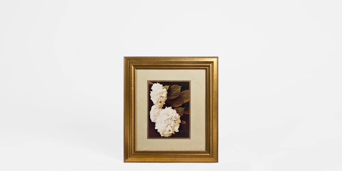 "25""w x 28""h Floral Art ART002007"