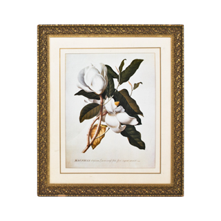 "36""w x 42""h Floral Art ART002270"