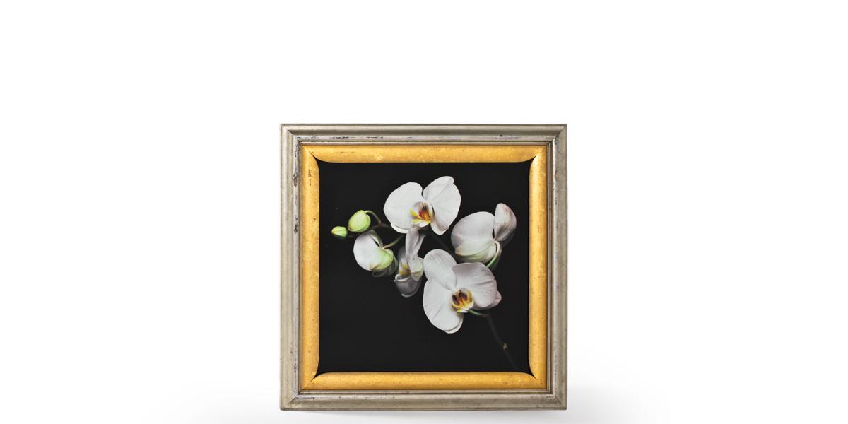 "32""w x 32""h Floral Art ART002434"