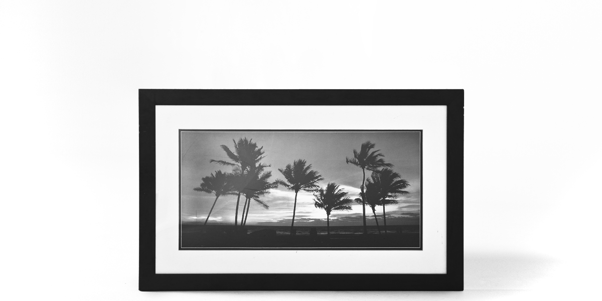 "32""w x 20""h Black + White Art ART010570"
