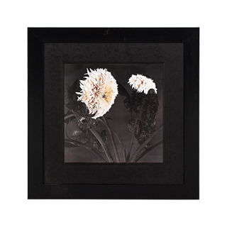 "33.25""w x 33.25""h Floral Art ART011366"