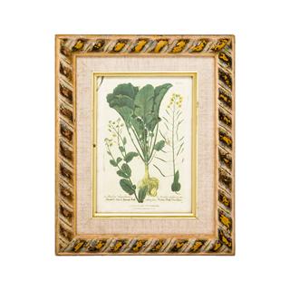 "8.75""w x 10.75""h Floral Art ART002384"
