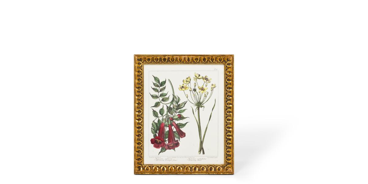 """10.25""""w x 12.25""""h Flower Art ART002389"""