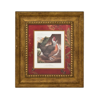"18.5""w x 20.5""h Animal Art ART007879"
