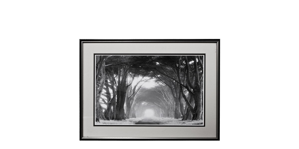"37""w x 27""h Black + White Art ART008331"