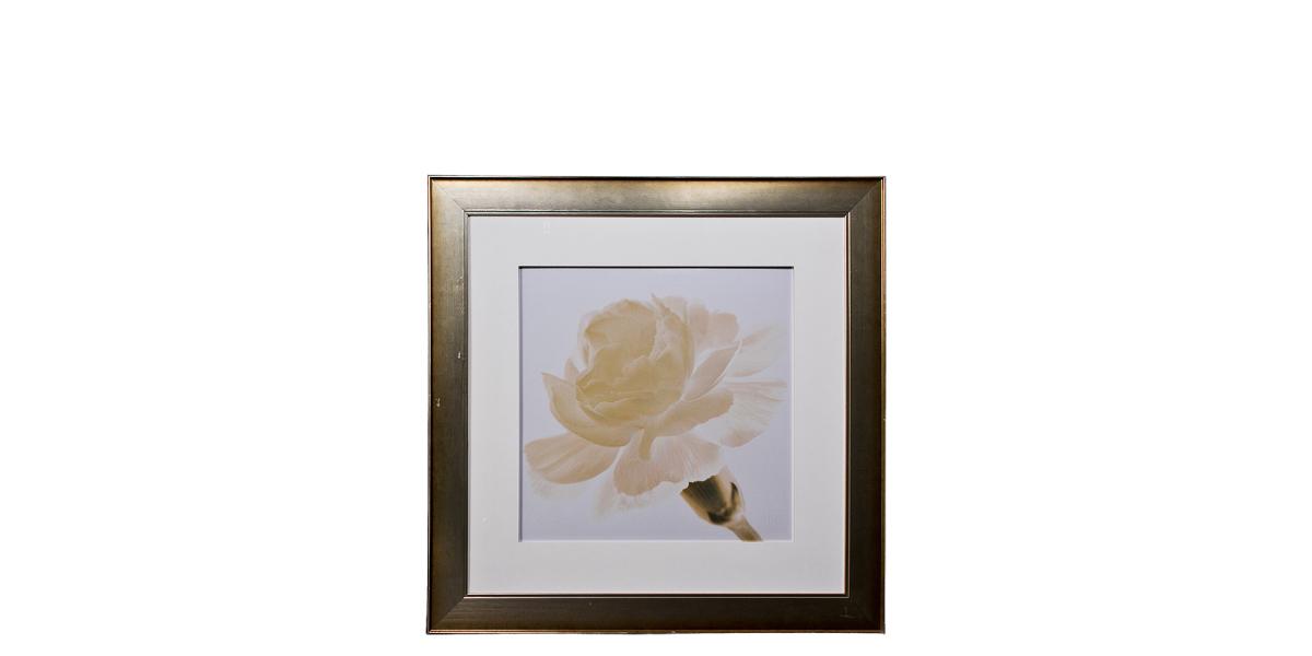 "43""w x 43""h Floral Art ART010564"