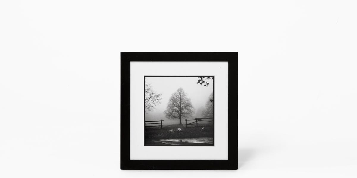 "19.75""w x 19.75""h Black + White Art ART010572"