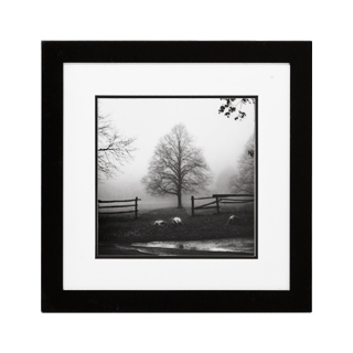 "19.75""w x 19.75""h Black + White Art ART010572"