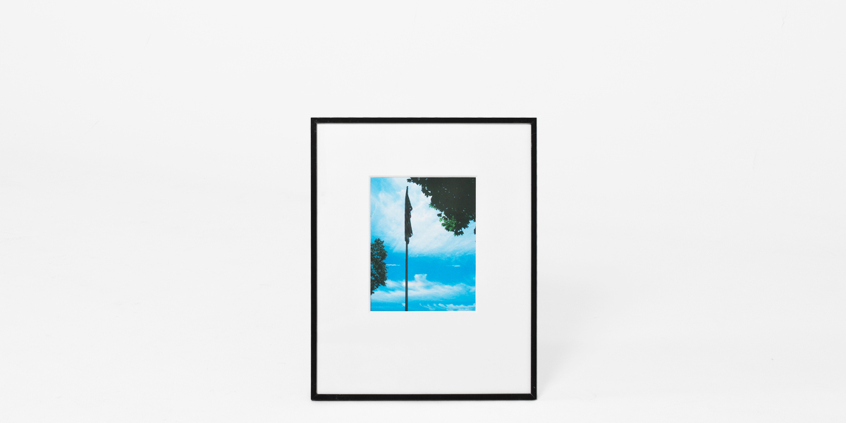 "16""w x 20""h Photography Art ART010898"