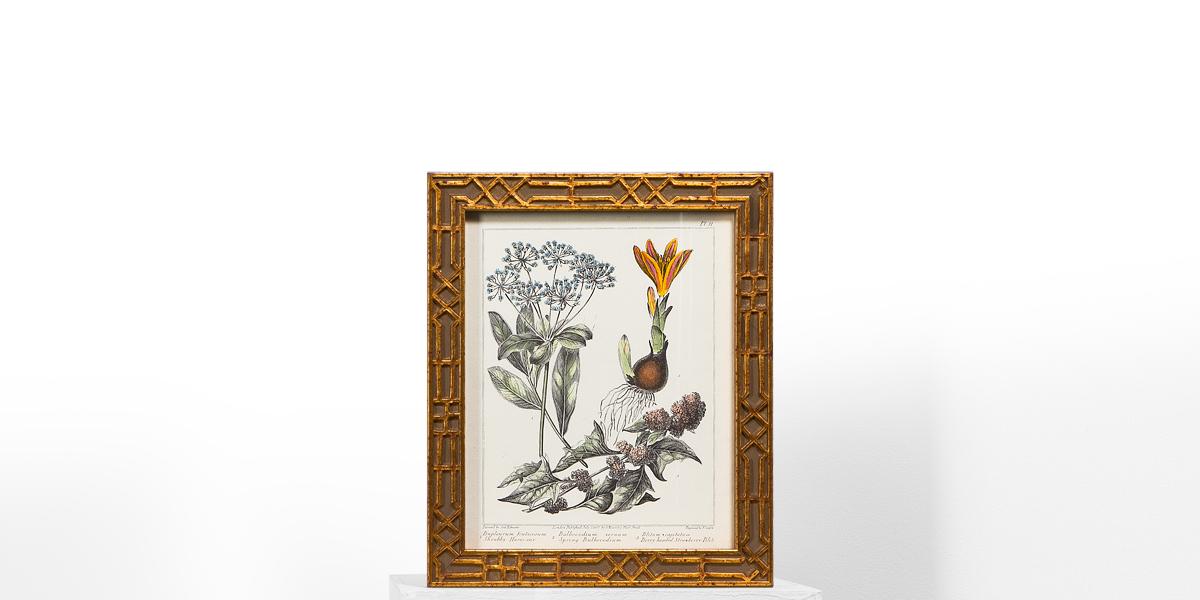 "10""w x 12""h Floral Art ART009486"