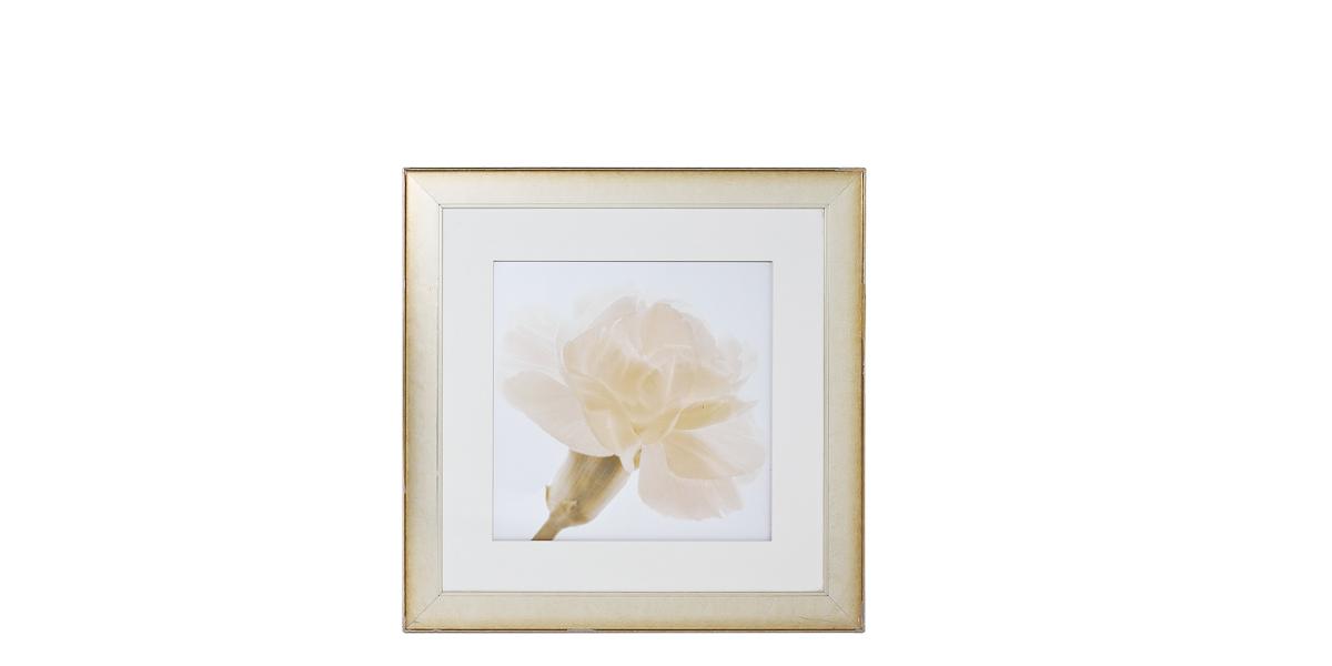 "43""w x 43""h Floral Art ART010565"