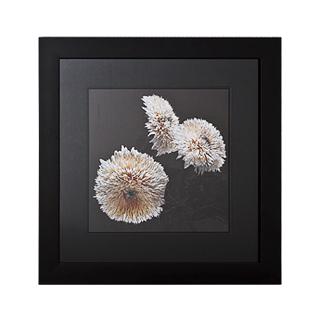 "33.25""w x 33.25""h Floral Art ART011367"