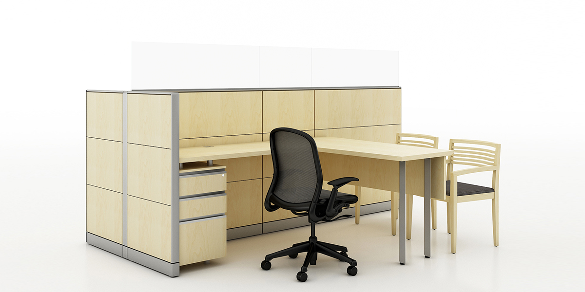 Sales Consultant Workstation: OPT 2