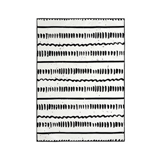 5' X 8' Black/White Rug MIS014620