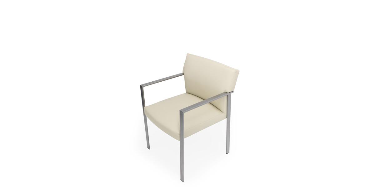 Metal Frame Side Chair CHR014581