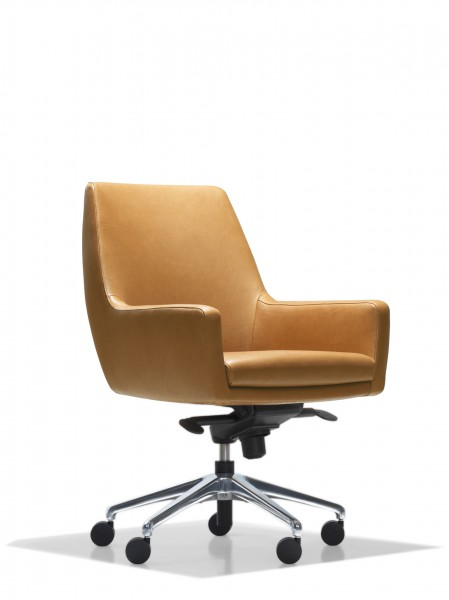 Cardan Conference Chair